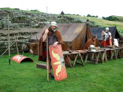 Roman marching camp - Contubernia tents